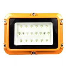 NFC9100_200W防爆灯LED吸顶灯图片