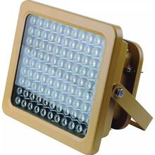 冷庫50W防爆燈LED防爆燈多少錢圖片