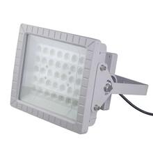 XPED300防爆灯隔爆型壁灯图片