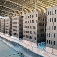 西安博垦特自动化砖厂项目隧道窑干燥室工艺设计及建造图片