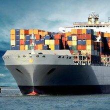 国际快递美国专线专业可靠深圳国际货运高级物流管家