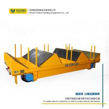 帕菲特15年定制经验蓄电池无轨车工业小车车间电动平板搬运车图片