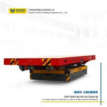 輥道車蓄電池供電軌道搬運車南京噴漆房用電動運輸平板過跨轉運車圖片