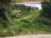 咸宁矿山植被恢复专用草籽有哪些?