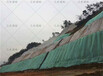 咸宁矿山绿化工程专用国标绿色无纺布单价多少?