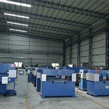 裁斷機雙工位定制各種規格裁斷機珍珠棉手動裁斷機沖床