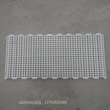 成鸭塑胶地板漏粪地板厂家直销防滑塑料漏粪地板
