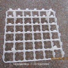 鸡蛋鸭蛋托装鸡蛋的蛋托塑料鸡蛋盒
