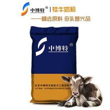 犊牛的饲养中博特犊牛奶粉