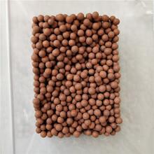 石家莊倫邁直銷木魚石球礦化球坐墊填充水處理木魚石濾料木魚石顆粒圖片