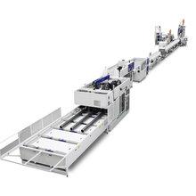 PPPVCPEPPR管材生产线
