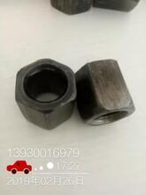 天津市圓螺母應用的地方修江緊固件廠家可以定制產品圖片