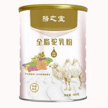 新疆驼奶粉厂家价格双峰驼中老年骆驼奶粉代理加盟图片