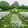 草坪婚礼场地