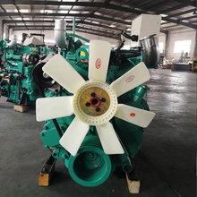潍坊4105发动机树枝粉碎机打草机用潍柴4105柴油机