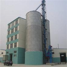 厂家直供粮食钢板仓装配式钢板仓沙石料钢板仓图片