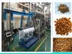 高產量高品質寵物飼料膨化機狗糧加工生產設備