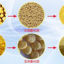 膨化玉米大豆加工设备家禽饲料生产线乳猪饲料设备厂家