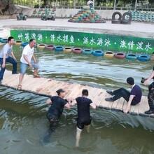 息县抖音网红摇摆桥价格划算的图片