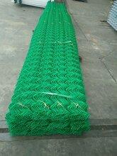 毕节县圈地用的铁丝勾花网厂家