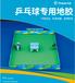 長春室內健身房運動地膠天速PVC塑膠地墊乒乓球地膠