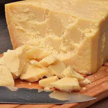 干酪检测/奶酪制品检测
