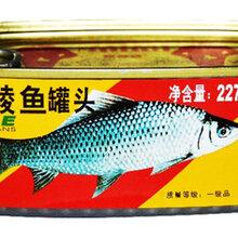 豆豉鲮鱼罐头检测