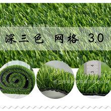 河北人造草坪、销售幼儿园草坪、足球场包工包料图片