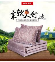 方城縣廠家直銷夏涼被枕芯枕頭供應圖片