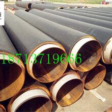 大兴安岭优质产品DN700法兰焊接涂塑钢管图片