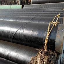 黄山优质优游注册平台DN80输水tpep防腐钢管图片