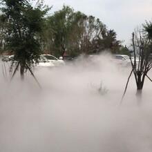 旅游景區霧森系統,陪你清涼度夏圖片