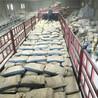 超细水泥注浆料厂家