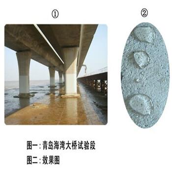 全国JS聚合物改性防水涂料厂家适用于长期浸水环境