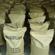 低氨氮生物去除剂