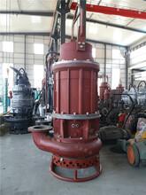 攪拌式抽漿泵耐磨排漿泵防堵塞抽泥漿環保清淤好搭檔圖片