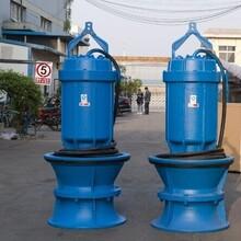 大流量低扬程潜水轴流泵_污水处理厂_防洪泵站图片