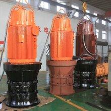 市政防汛工程建设用的大流量潜水式轴流电泵图片
