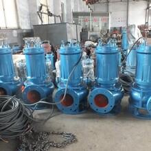 耐热水池高温污水排放潜水泵_厂家供应_价格对比图片