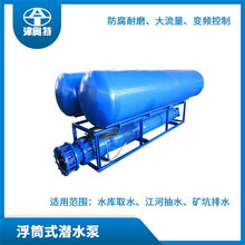 廣東鑄鐵浮筒式離心泵圖片