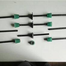 池州止水螺桿-對拉止水螺栓有樣式-淮安嘉運圖片