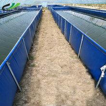 pvc刀刮布养殖水池,抗老化防水水池潮汕帆布养殖场帆布鱼池订做图片