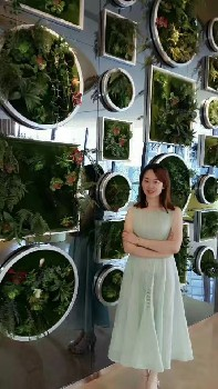 重庆植物墙制作重庆仿真植物墙制作重庆墙面绿化