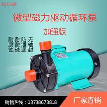 厂家直销MP系列微型磁力泵高扬程磁力驱动泵耐腐蚀化工循环泵图片