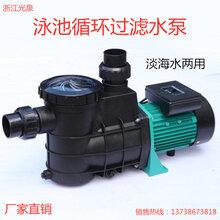 泳池噴泉水循環過濾水泵自吸循環水泵工程塑料耐腐蝕離心自吸泵圖片