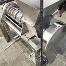 大型工业螺旋榨汁机工业螺旋果蔬榨汁机甘蔗榨汁机图片