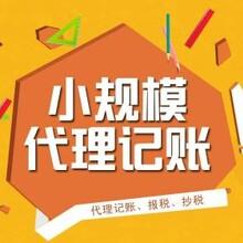 广州专注代理记账报税公司没有记账后果很严重图片