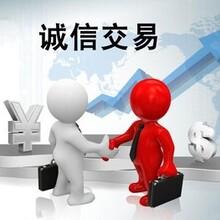 财税服务代理记账内资小规模记账等代理企业报税图片