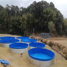 镀锌板圆弧拱形圆形水池虾池泥鳅养殖池篷布帆布水池图片
