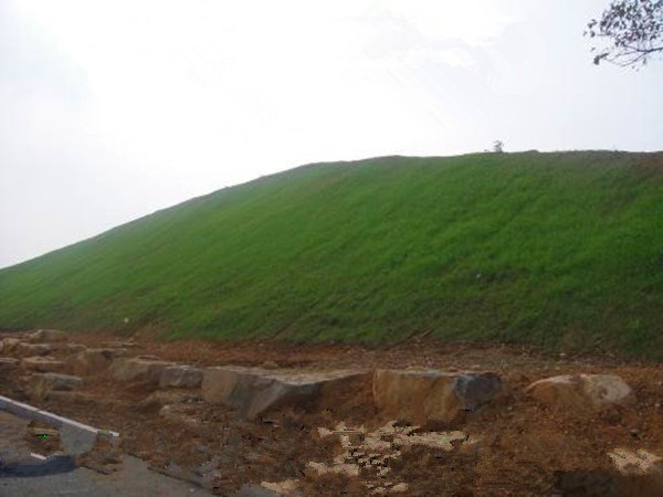 巫溪绿化专用矿山复绿种草草籽喷播机